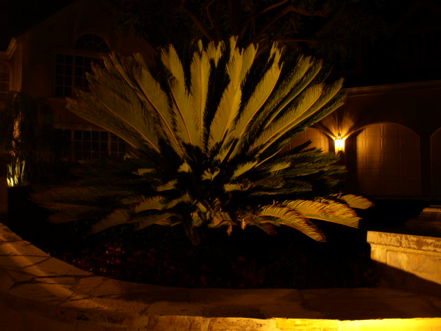 outdoor lighting dos vientos